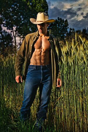 Portrait of sexy farmer or cowboy in hat with unbuttoned shirt on muscular torso, looking to a side, while standing next to hay field in countryside 免版税图像