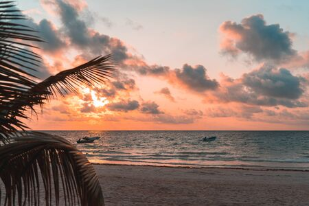 Palm leaves and fishing boats at sunrise on the sandy beach of the Caribbean in Mexico 版權商用圖片