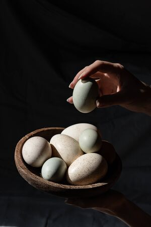 Araucana eggs and goose eggs on a wooden plate in female hands