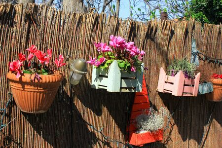 Decorative wooden crates and flower pots on a garden's fence.