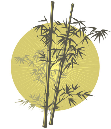 zenlike: The Asian Bamboo illustration in khaki color