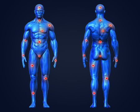 3D Rendering, Conceptual human muscle anatomy man red joint pain points medical, for health care therapy or sport concepts, Blue shade front and back view on dark background, with clipping path.