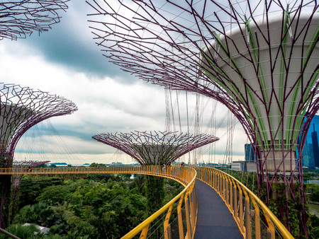 Supertree, Singapore - Nov 27, 2018: Tourists walking in the Supetree Grove area at the Gardens by the Bay in Singapore near Marina Bay Sands hotel at summer night. Editorial