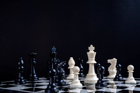 A white chess teame and black chess team ,idea for business competition and team work.