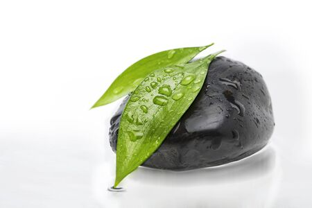 Two green leafs on black stone photo