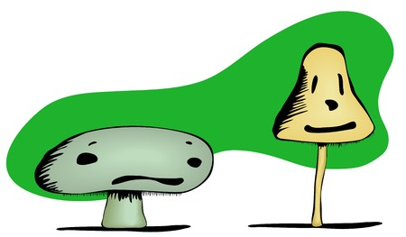 A short, poisonous mushroom with a frown and a psychedelic mushroom with a smile.  Illustration