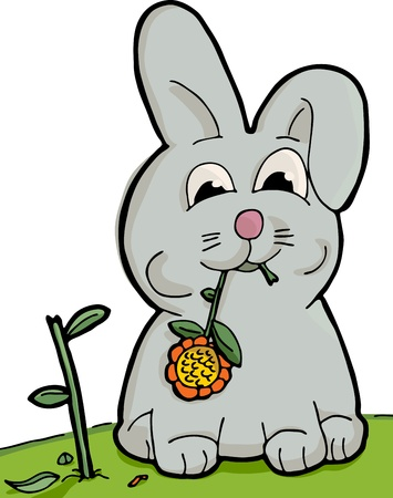 Cute bunny munching on a sunflower with torn stem