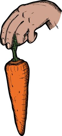 tempt: Dangling a carrot illustration on white background Illustration