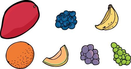 Isolated illustrations of mango, blueberries, bananas, orange, cantaloupe slice and grape on white Vector