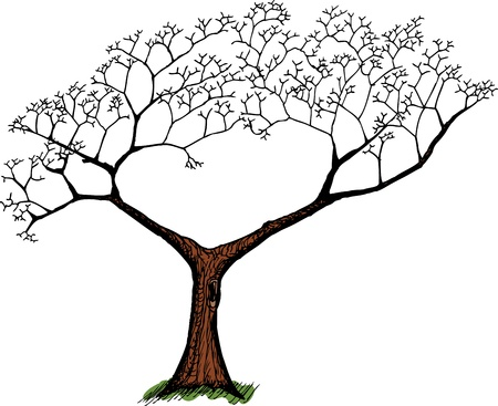 Cartoon of old tree with green grass over white