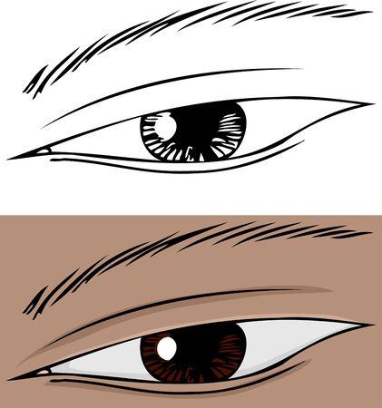 slanted: Primer plano del ojo humano inclinado con iris marr�n