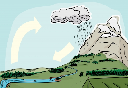 water cycle: Water cycle in the wilderness illustrated diagram Illustration