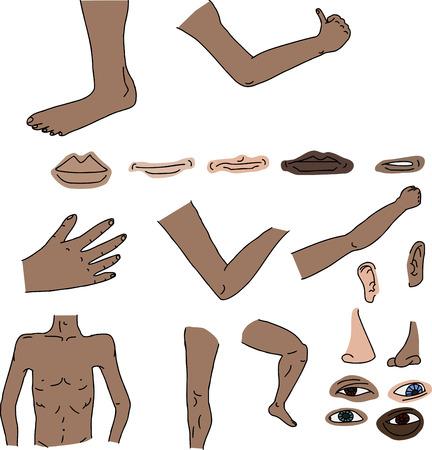 Geïsoleerde menselijke lichaamsdelen op witte achtergrond