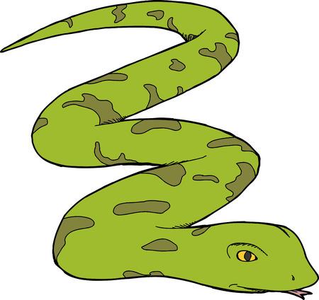 Isolated green snake over isolated white background Stock Illustratie