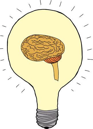 Isolated bright light bulb with brain inside Vector