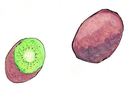 キウイ フルーツはテンペラとインクを静物します。