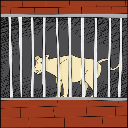 confined: Cartoon of sad lion behind bars in zoo