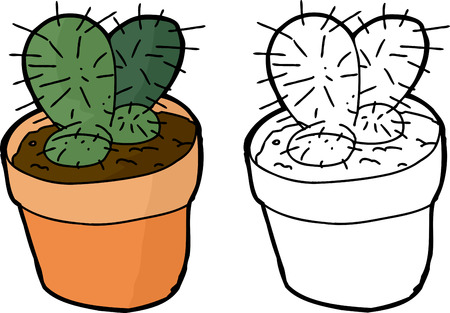 houseplant: Cactus houseplant in pot over white background