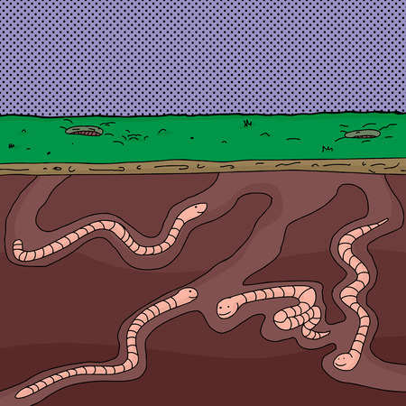 digging: Four cartoon worms digging underground through tunnels Illustration