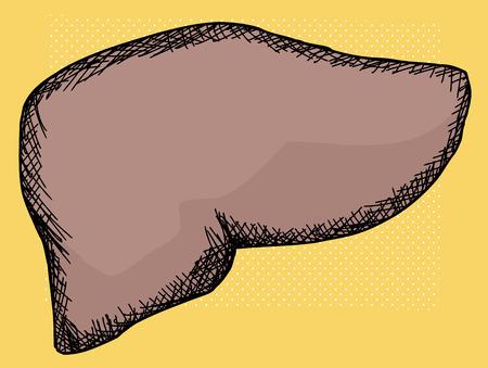higado humano: De dibujos animados de h�gado humano sobre fondo amarillo de semitonos