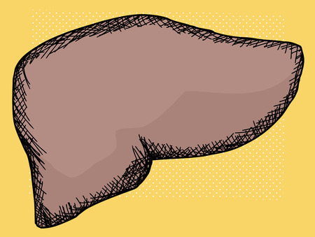 digestive: Human liver cartoon over yellow halftone background
