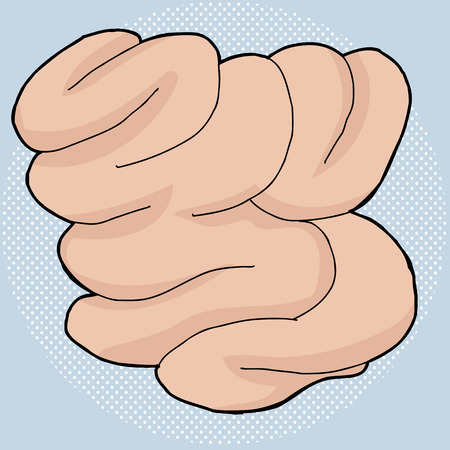 Hand drawn human small intestine over blue