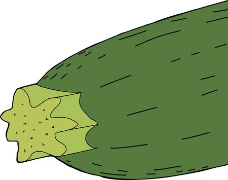 zucchini: Close up of hand drawn cartoon zucchini over white