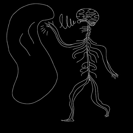 Abstract human nervous system reaching for soft object Vector