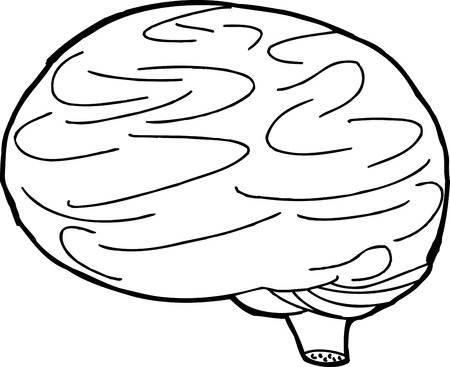 out of body: Outline drawing of brain over white background