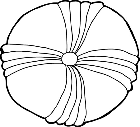 sand dollar: Isolated outline drawing of common echinoderm fossil