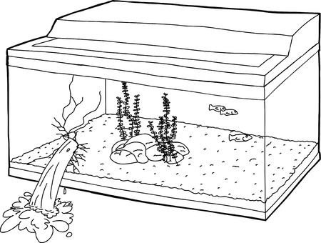 Outlined fish tank with hole and leaking water