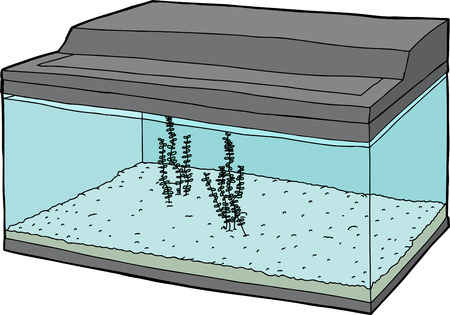 Cartoon fish tank with plants over white background 向量圖像