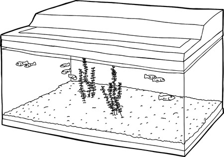 Outline cartoon of tiny fish swimming in tank