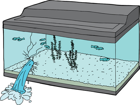 oblivious: Oblivious fish swimming in leaking fish tank