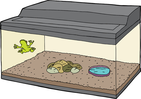 confined: Cartoon of little frog on wall in aquarium Illustration