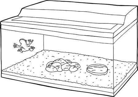 confined: Outline cartoon of frog on fish tank wall