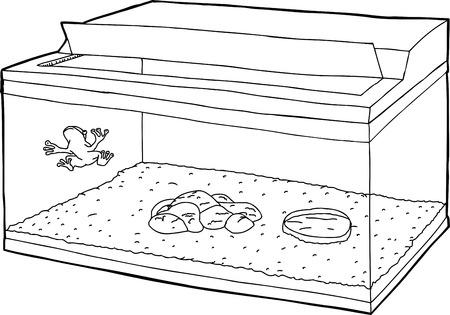 Cartoon outline of frog on wall of aquarium