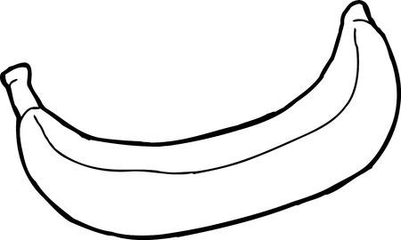plantain: Outline of banana illustration over white background