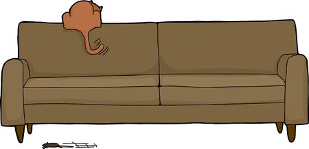 interested: Cartoon of brown house cat looking for mouse under sofa Illustration