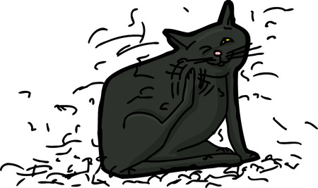 itching: Black domestic cat shedding hair while scratching himself Illustration
