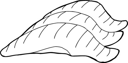 Hand drawn cartoon outline of sushi pieces