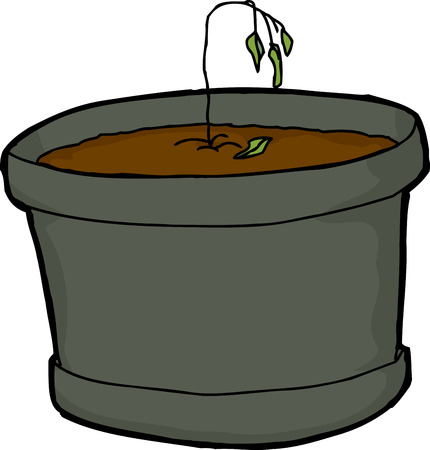 dying: Illustration of dying little houseplant over white background