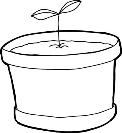 seedling: Single pot with seedling over white background Illustration