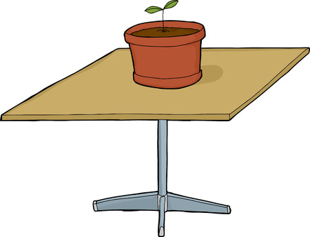 table top: Isolated seedling on top of square table