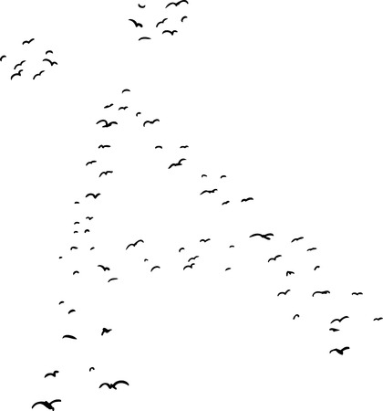mid air: Illustration of a flock of birds in the shape of the diacritical a letter