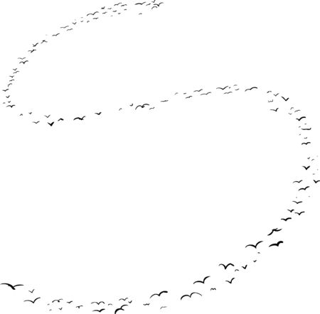 mid air: Illustration of a flock of birds in the shape of the letter s Illustration