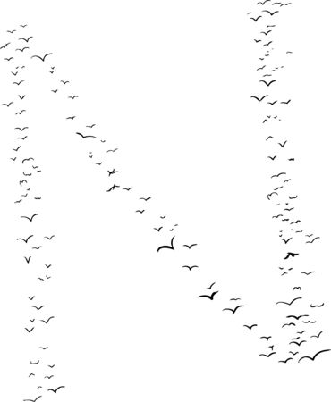 mid air: Illustration of a flock of birds in the shape of the letter n Illustration