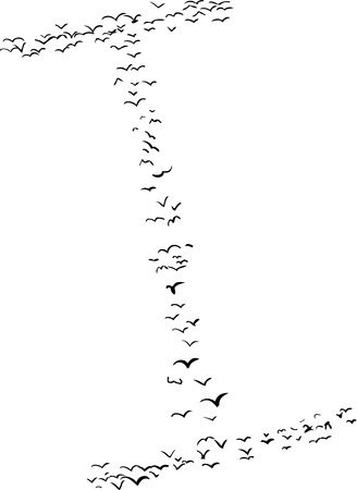 i nobody: Illustration of a flock of birds in the shape of the letter i Illustration