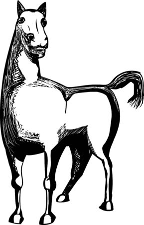 outs: Outlined hand drawn horse over isolated background Vectores