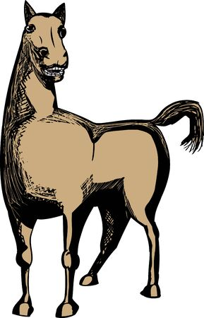 Single illustration of brown horse over isolated background